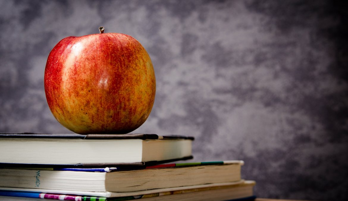 Texas Education Agency to roll out school ratings