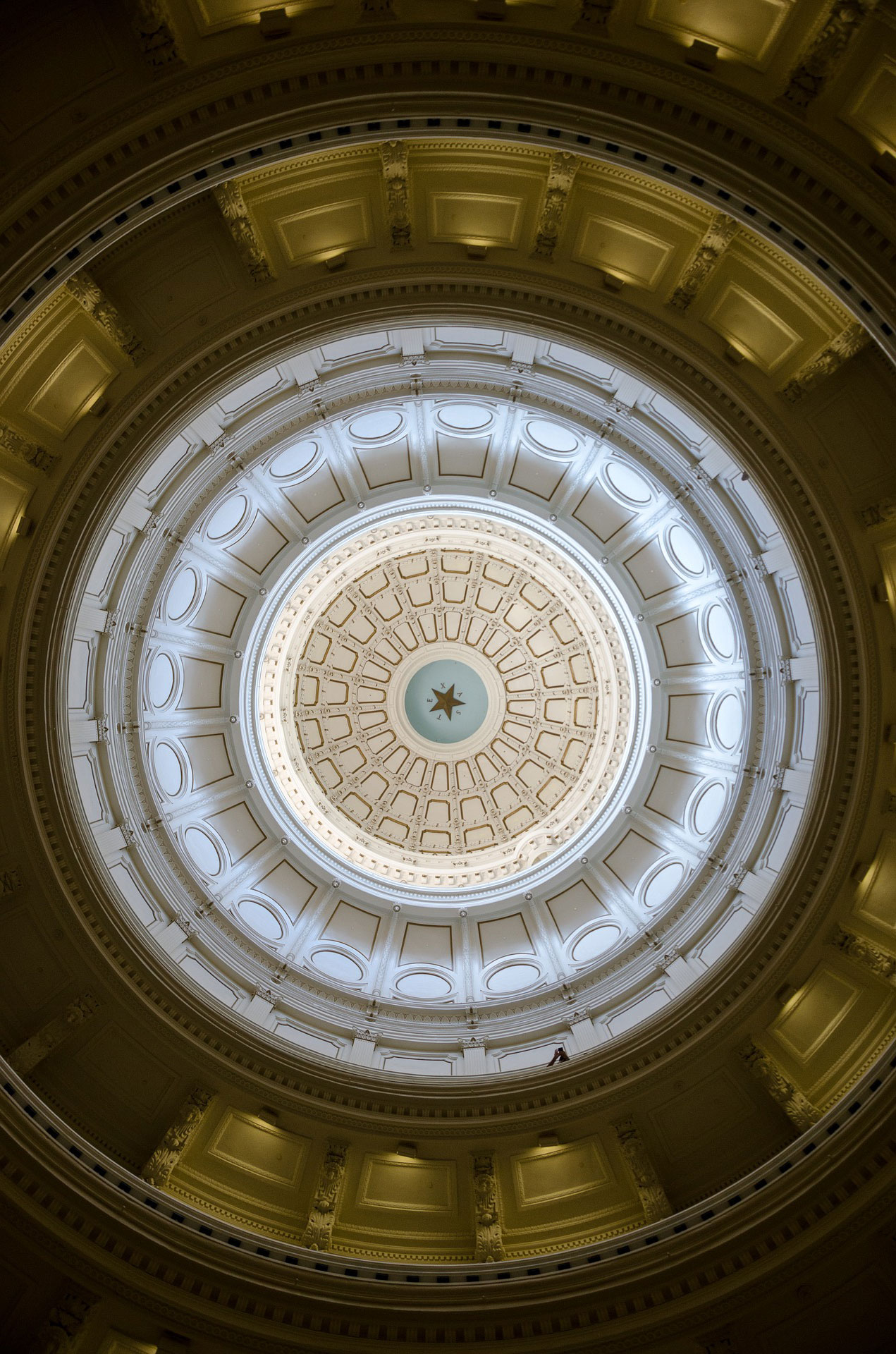 The Texas House Democratic Caucus Is An Official Caucus Of The Texas House  Of Representatives.